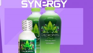 Chlorophyll Plus Minuman Herbal 08159623389