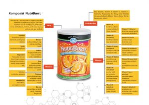 NutriBurst Synergy Kaya Manfaat